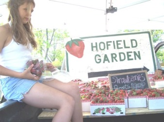Hofield Strawberries