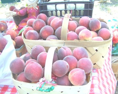 Harmony Hills Farm peaches