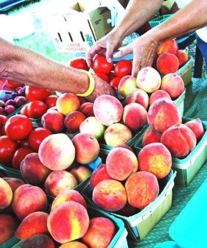 South Carolina peaches (Sandhill Farmer's Market)