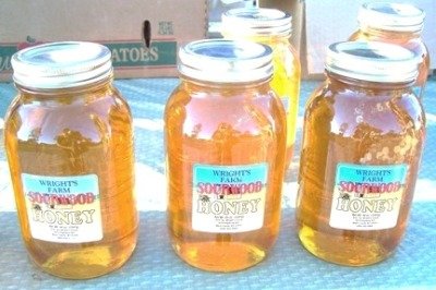 South Carolina Honey