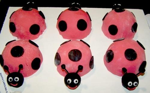 SC fair  ladybugs